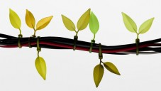 Leaf Tie je svorka na kabely tvaru listu