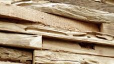 Wonderwall Studios tvoří stěny z recyklovaného dřeva