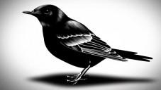 Černobíle zanimovány hranice mezi životem a smrtí