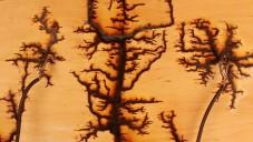 Studentka vytvořila obrazce do dřeva 15 000 volty