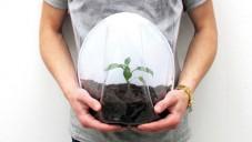 Designérka navrhla těhotenské břicho pro pěstování rostlin