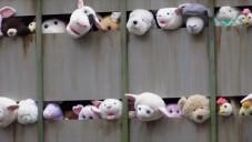 Banksy nechal USA projet plyšová zvířátka na porážku