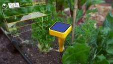 Edyn je zahradní senzor pro úspěšné pěstování