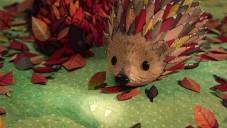 Animovaný klip má pomoci návratu ježků do přírody