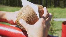Kanadský umělec si vyrobil fotoaparát z obyčejného kokosu