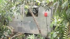 Mileece vytvořila instalaci Sonic Garden hrající zvuky rostlin