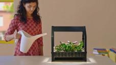 Ikea přichází se sadou pro malé domácí zahradnictví