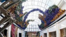 Melbourne má instalaci ze 150 000 sušených květin