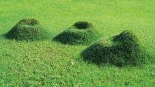 Nucleo navrhlo venkovní křeslo z hlíny a trávy