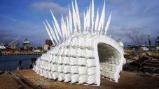Terreform postavil pavilon k chování hmyzu na jídlo