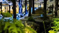 V kancelářích King ve Stockholmu vyrostl nový umělý les