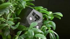 Flora Robotica vyvinula první roboty starající se o rostliny