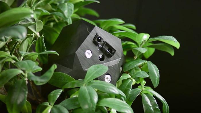flora-robotica