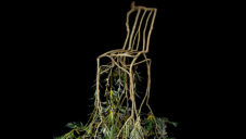 Full Grow nechávají růst stromy do tvaru židlí a svítidel