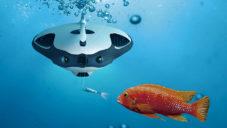 PowerRay je první podmořský dron pro chytání i sledování ryb
