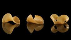 Vědci z MIT vymysleli 2D těstoviny měnící se ve vodě na 3D objekty