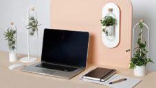 Magnetické květináče Oasis mají přinést zeleň do kanceláří