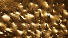 Německý filmař roztančil kovový prach s pomocí magnetů