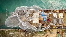 U Britských Panenských ostrovů potopili loď se sochou chobotnice