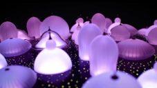 Lasvit vytvořil dynamickou světelnou instalaci s tvarem kupolí pěti mešit