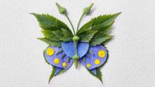 Raku Inoue vytváří realistické obrazy motýlů a brouků jen z květů a listů
