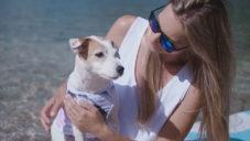 Hotdog Apparel navrhují jednotné módní kolekce pro pejsky i jejich majitelky
