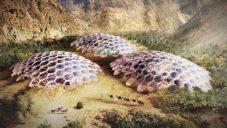 Baharash navrhli pro Spojené arabské emiráty plně soběstačné Biodómy