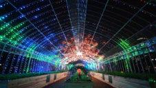 Digital Vegetables je světelná instalace plná živých rostlin v centru Tokia