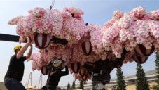 V Japonsku vyrostl rozkvetlý strom postavený v Česku z 800 000 kostek Lego