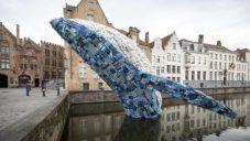 V Belgii z vody skáče velryba vytvořená z 5 tun plastu vyloveného z moře