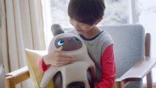 Japonský domácí robot Lovot je navržen pro navození pocitu štěstí i mazlení
