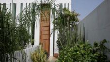 Jorge Pardo a Milena Muzquiz ukazují svůj bílý dům v Mexiku plný zeleně