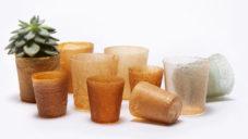 Britové vyrobili ekologickou alternativu plastu použitím odpadu z mořských plodů