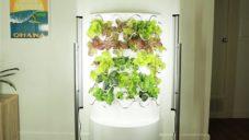 iHarvest je moderní domácí pěstírna na ovoce a zeleninu