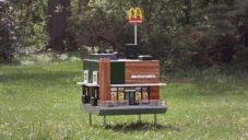 McHive je funkční včelí úl a nejmenší restaurace McDonald's na světě