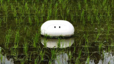 Nissan vyrobil plovoucího robota pomáhajícího v pěstování rýže