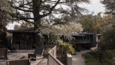 Pamela Shamshiri ukazuje dům z roku 1947 stojící uprostřed lesa v Los Angeles