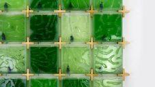 Jihokorejec vyvinul domácí pěstírnu řas The Coral čistící okolní vzduch