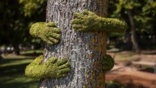 Monsieur Plant objal stromy ve francouzském lese rukama z mechu