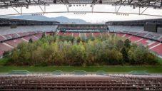 Umělec vysázel uprostřed rakouského stadionu 300 živých stromů