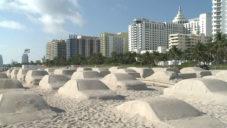 Leandro Erlich vytvořil kolonu aut z písku jako varování před změnou klimatu