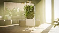 Respira je malá volně stojící vertikální zahrada do domácnosti