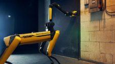 Čtyřnohý robot Spot dostal rameno plně nahrazující lidskou ruku